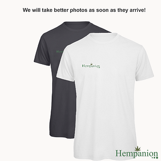 Mens Organic Hempanion T-Shirt - White and Dark Grey