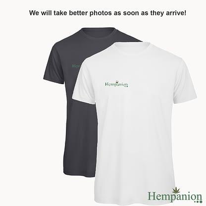 Mens Organic Hempanion T-Shirt - White and Dark Grey