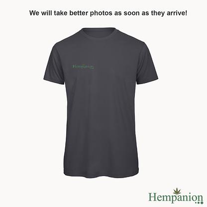 Hempanion Organic Mens T-shirt - Grey