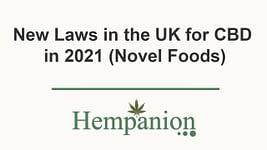 CBD Novel Food UK 2021