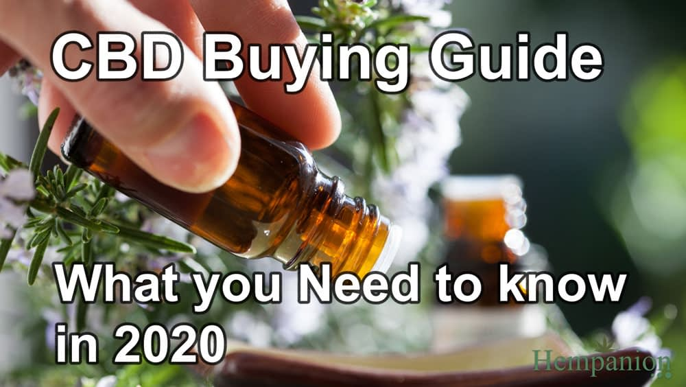 things to know before buying CBD guide